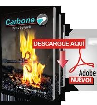 Catálogo Hierro Forjado y Motores de Porton